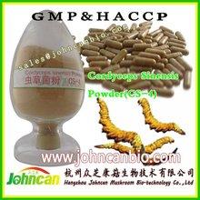 Cordyceps sinensis(CS-4) polysaccharide / Powder /Extact