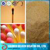 300 bloom match glue/industrial bovine organic gelatin powder for match