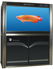 rs aquarium with stand for arowana With Bottom Filtration System