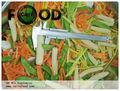 الخضروات المجمدة الخضروات المجمدة مختلطة