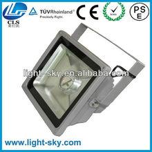 LED Flood Light 60 Watt 24V for Lawn