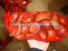 2012 big size fresh chestnuts 30-60pcs/kg