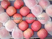 bulk fresh Fuji apple