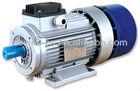 YEJ series brake motor