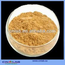100% natural Ginko Biloba Extract Powder CP2010
