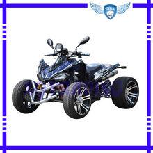 250CC Gasoline ATV 250XQ-307J