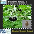 Alta calidad polvo extracto de Ginseng siberiano