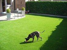 near natural outdoor play mats for pet/kids