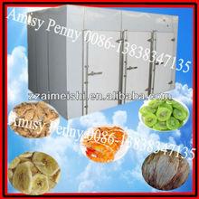 stainless steel kiwi,banana,apple,fish, shrimp drying machine/fruit dryer machine/0086-13838347135