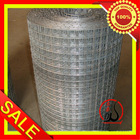 "1/2"" x 1/2"" Galvanized Welded Wire Mesh Dongtai-016"