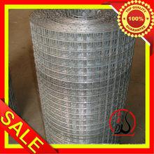 """1/2"""" x 1/2"""" Galvanized Welded Wire Mesh Dongtai-016"""