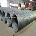 5.5mm tige de fil d'acier en bobines