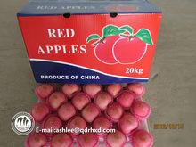 Chinese New Fresh Red Fuji Apple