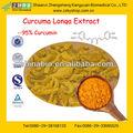 Fabricant de gmp alimentation pure curcumine( oléorésine de curcuma)