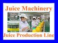 Processus de fabrication de jus de fruits( vente chaude)