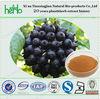 Organic Arthritis Herb Medicine Siberian Ginseng Extract Powder Natural Herb Medicine