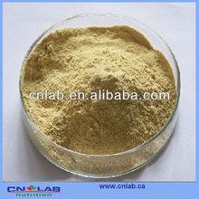 Factory price Kola Nut Extract