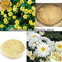 Chrysanthemum Extract for Improving Immunity