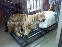 cheap dog kennels