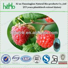 Natural Plant fructus rubi p.e//Raspberry Ketone with Ellagic Acid