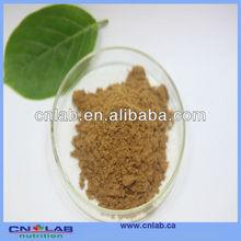 ISO&GMP Certificated High Quality Aloe Vera P.E.