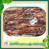 Frozen illex squid whole round