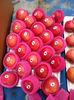 2013New season fresh apples Qixia city