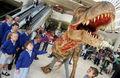 Gehen dinosaurier mit auf die u-bahn zentrum dinusaur kostüm lieferanten