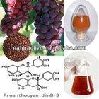 Grape Seed P.E. Powder