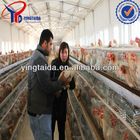 chicken cage for poultry farm (factory)