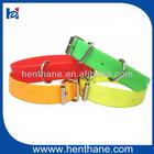 PVC hunting dog collar in stock