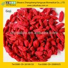 Chinese medlar fruits/wolfberry/Ningxia Goji Berries