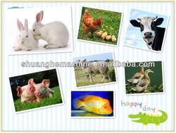 pet dog/cat/rabbit/animal fodder mixer