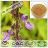 Natural GMP hot sale pharmaceutical grade coleus forskohlii extract