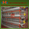 Good quality to sell Huaxing poultry coop