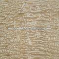 chino exótico de ceniza de madera del burl de la chapa
