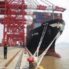 promotion ocean freight shenzhen shanghai ningbo to Willemstad