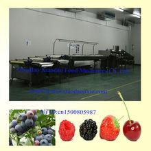 Fruit sorting machine / blueberry sorter /strawberry sorting machine