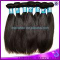 mais populares e de alta qualidade não transformados natural alta cabelo rabo de cavalo