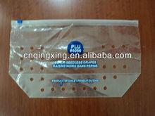 2013new style anticorrosion grape bag,cherry bag,fruit bag
