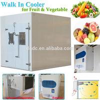Supermarket Walk In Cooler for Vegetable and Fruit