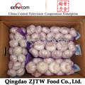 Chinois ail frais d'import export marché de dubaï