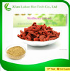 100% Natural Goji Wolfberry Extract With Competitive Price