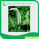 Black Cohosh p.e./ Triterpenoid saponis for for Menstruation disorder