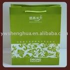 2014 newly design pp bag/plastic shopping bag /custom gift bag