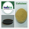 Cellulase Powder and Liquid, textile chemcial