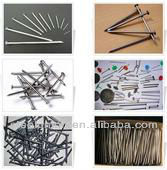 wire nails factory/ iron nail / common iron wire nail