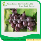 Top quality Grape seed extract, free sample