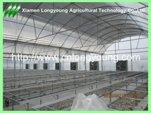 Multi-span Green House for Agriculture