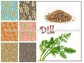 sementes dill óleo essencial